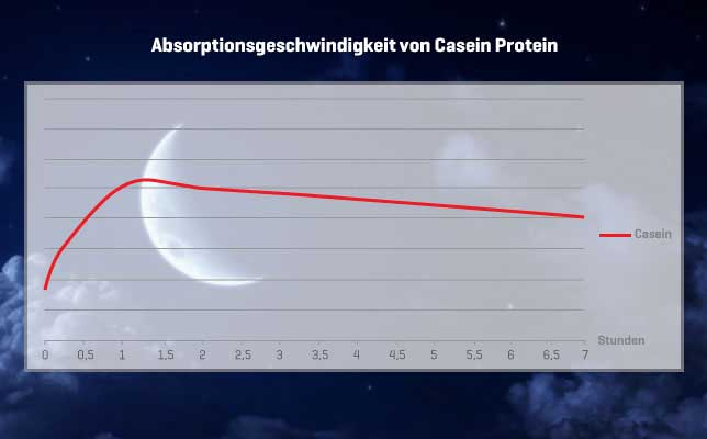 Casein Absorptionsgeschwindigkeit